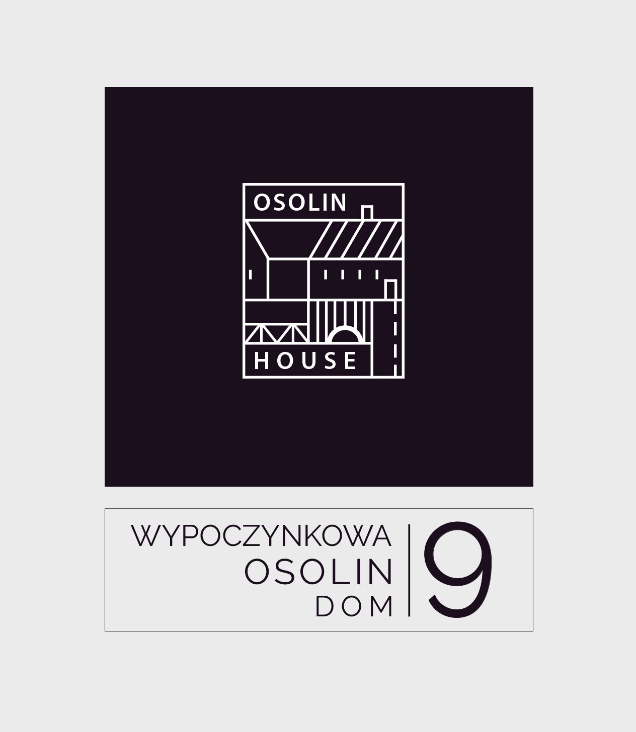 wizual-logo_osolin1